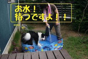 20110720_002mt.jpg