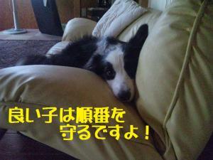 20110727_001mt.jpg