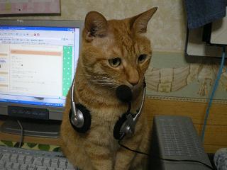 DJ ただ吉