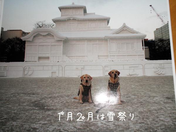 1_20111230224246.jpg