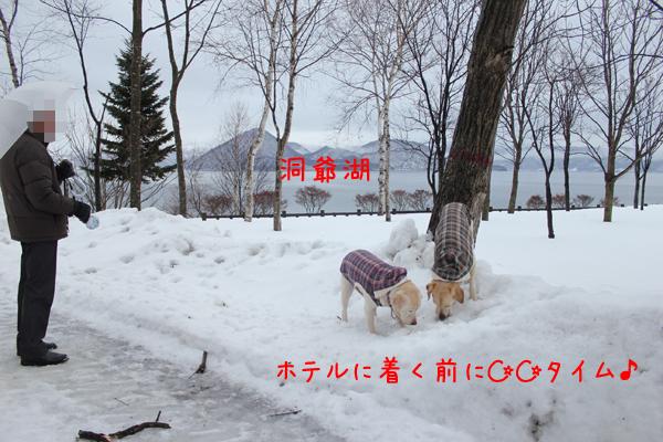 1_20120306210153.jpg