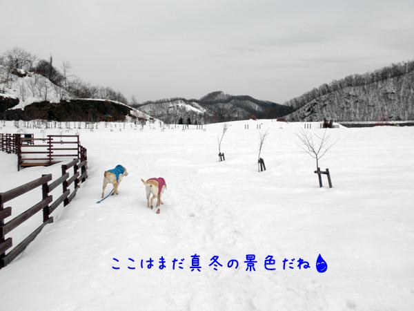 1_20120312234439.jpg