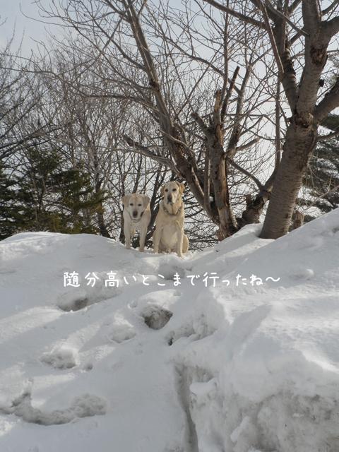 2_20120328213222.jpg