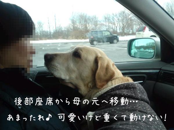 3_20120117221538.jpg