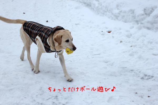 3_20120306210153.jpg
