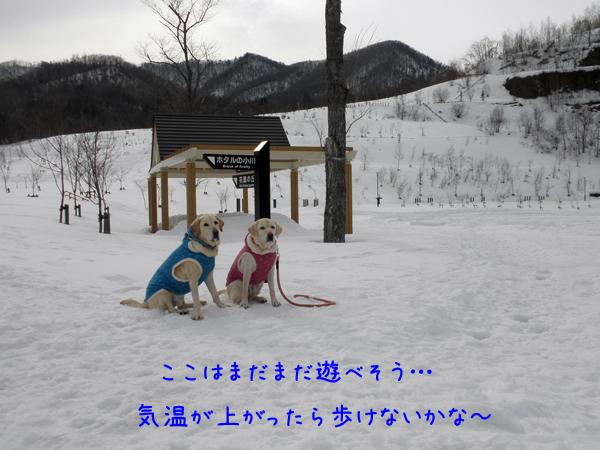 3_20120312234438.jpg