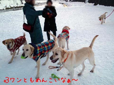 3wan2_20111221005336.jpg