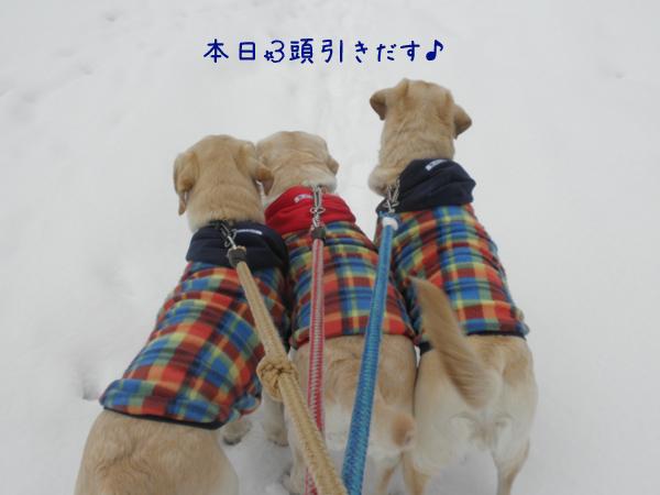3wan_20120325174411.jpg