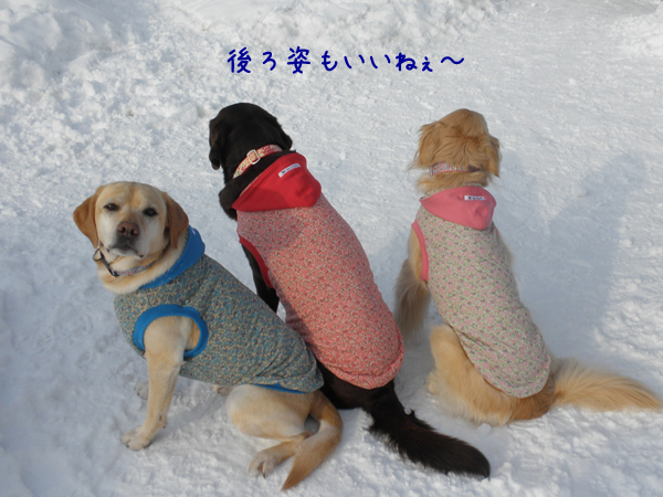 3wanusiro_20120220220942.jpg