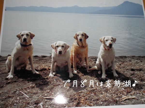 4_20111230224244.jpg