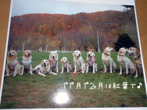 6_20111230224350.jpg