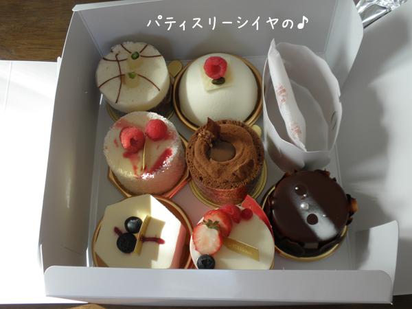 CAKE_20120313213420.jpg