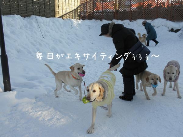 babara1_20120208203453.jpg