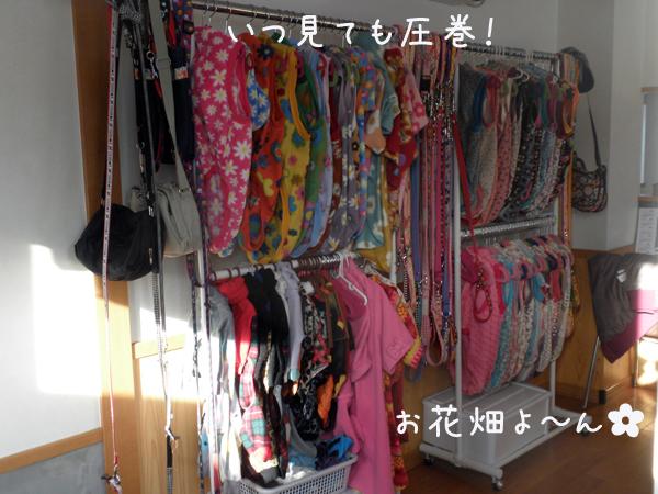 babara_20120226225058.jpg