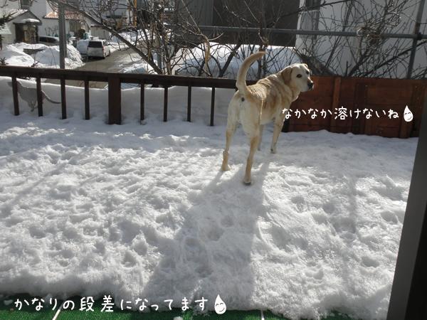 baru2_20120309205818.jpg