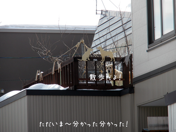baru2_20120321190043.jpg