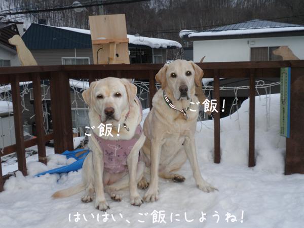 baru_20120206213912.jpg