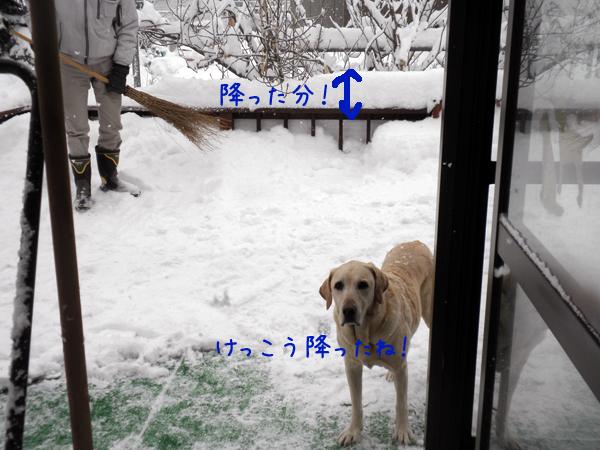 baru_20120224231232.jpg