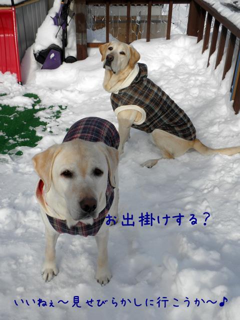 baru_20120227210605.jpg