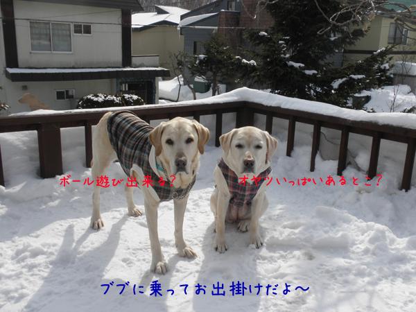 baru_20120305113745.jpg