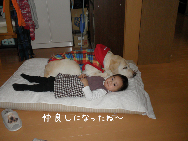 bed_20120129222523.jpg