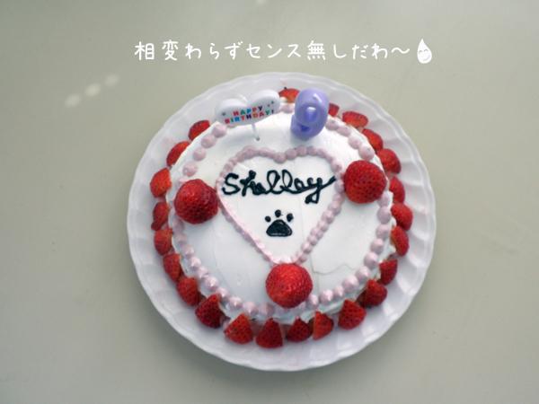 cake_20120402180352.jpg