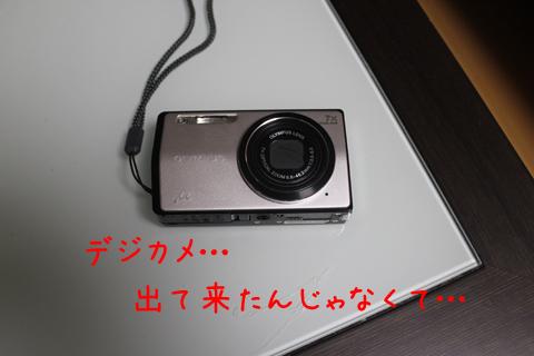 camera_20111226215138.jpg