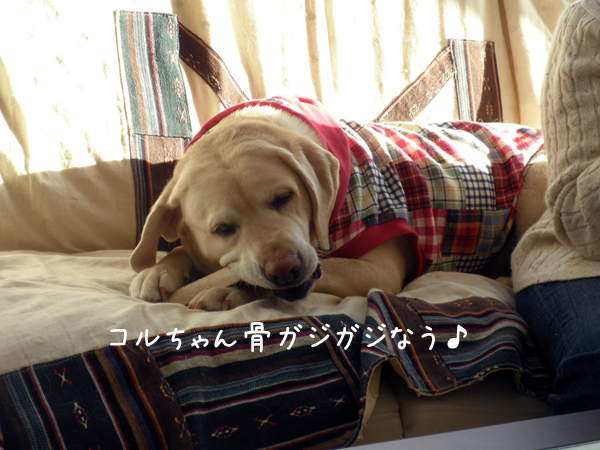 coru_20120203212400.jpg