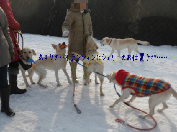 dai1_20120322212223.jpg
