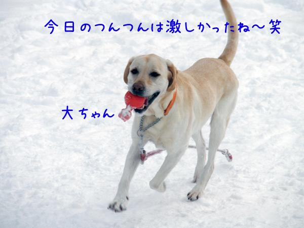 dai_20120205222012.jpg