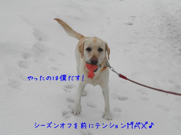 dai_20120323211746.jpg