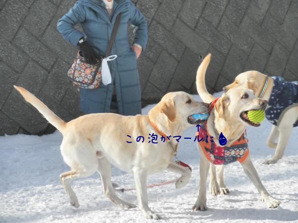 daimaru2_20120321190041.jpg