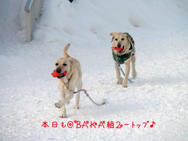 daimaru_20120213214109.jpg