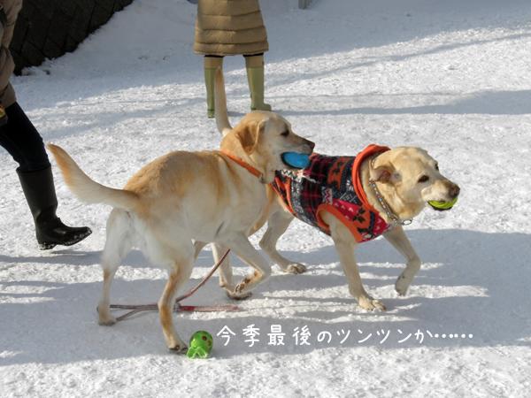 daimaru_20120321190042.jpg