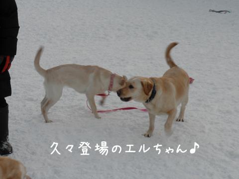 eru_20111225210057.jpg