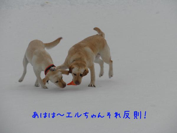 eru_20120121235300.jpg
