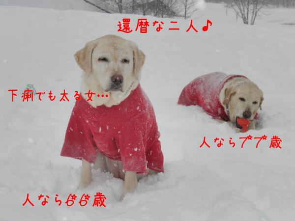 hiroba1_20120202211538.jpg
