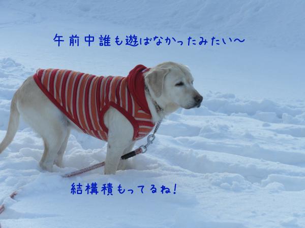 hiroba1_20120224231231.jpg