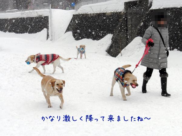 hiroba2_20120303205038.jpg