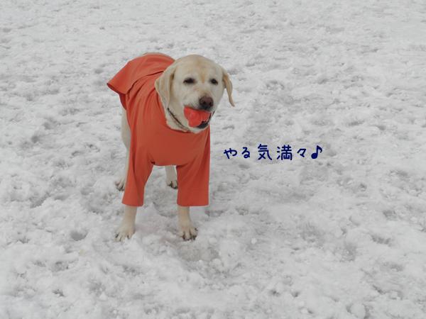 hiroba3_20120401173139.jpg