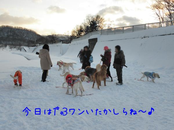hiroba_20120108012004.jpg