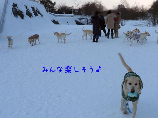 hiroba_20120111215109.jpg