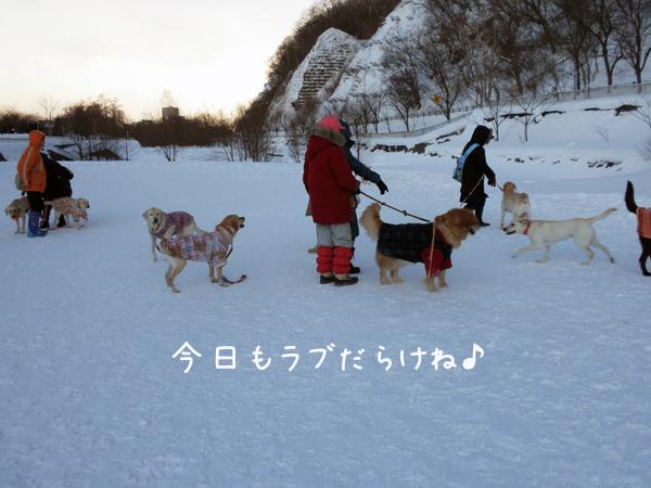 hiroba_20120115000856.jpg