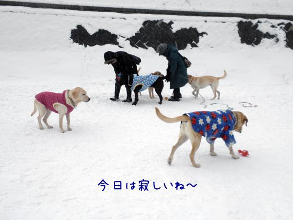 hiroba_20120221205730.jpg
