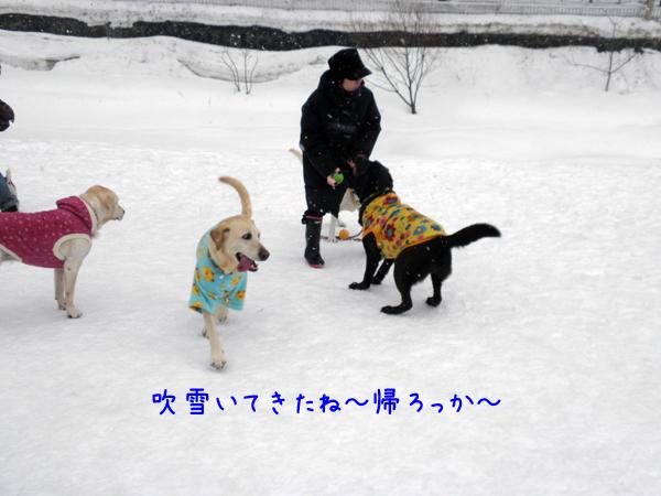 hiroba_20120223201728.jpg