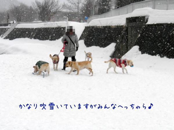 hiroba_20120303205039.jpg