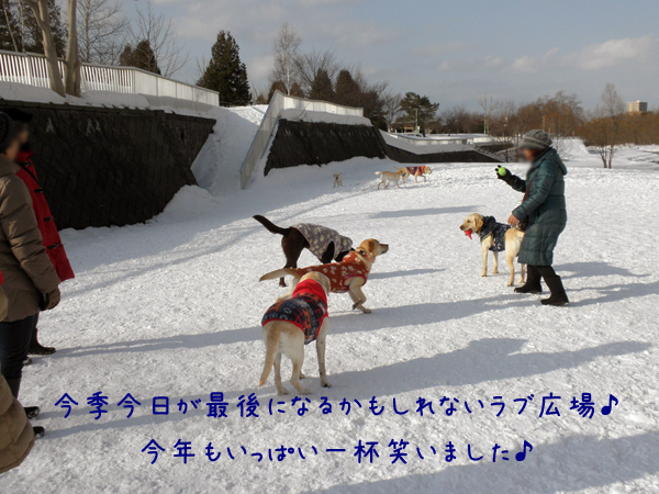 hiroba_20120321190042.jpg