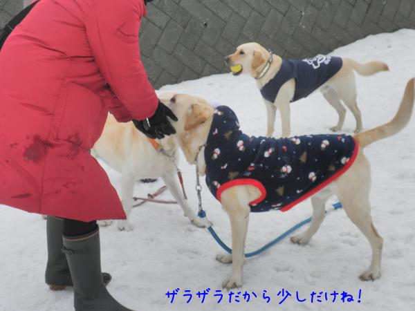 hiroba_20120323211748.jpg