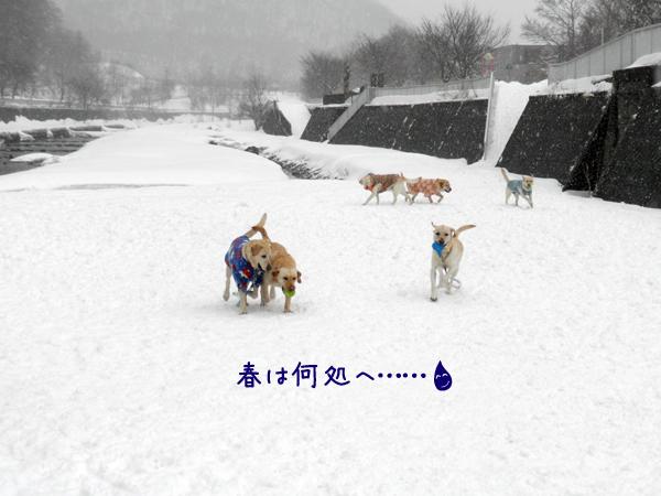 hiroba_20120324233901.jpg