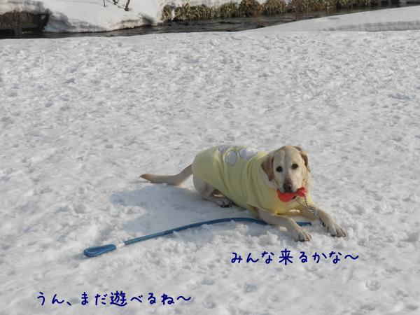 hirobamaru_20120322212227.jpg